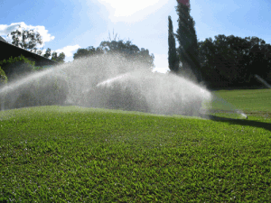 Gallery-Lawn-Sprinklers3