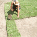 Gallery-Laying-Lawn
