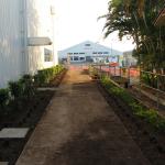 Gallery-Path-Garden-2