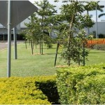 Townsville Airport Maintenance