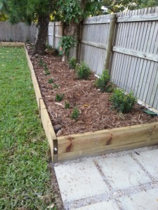 Garden with mulch applied